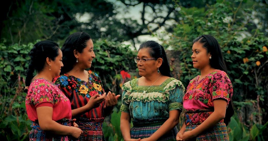 Programa Indígena